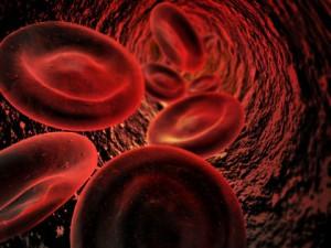 L'incompatibilité sanguine foeto-maternelle
