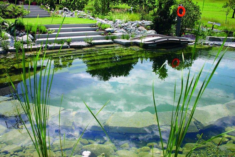 L'entretien écologique de votre piscine